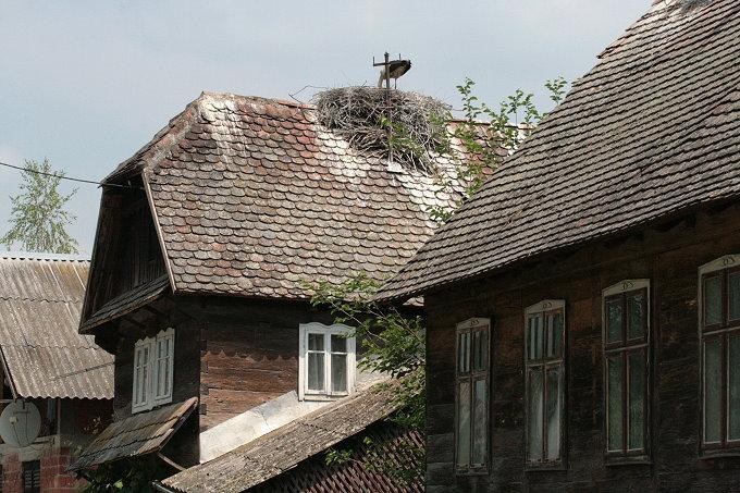 landesinnere cigoc storchennnest auf dem dach istrien kroatien photos und bilder aus. Black Bedroom Furniture Sets. Home Design Ideas