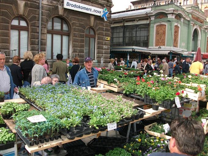 Markt Rijeka