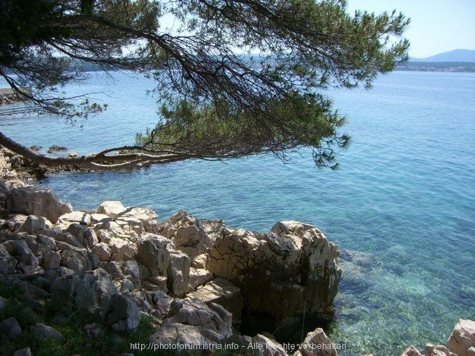 Otok Krk